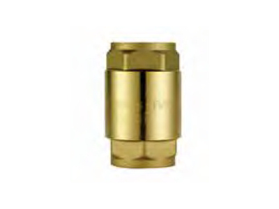 091 FLAT SEAT CHECK VALVE w/SS PLATE